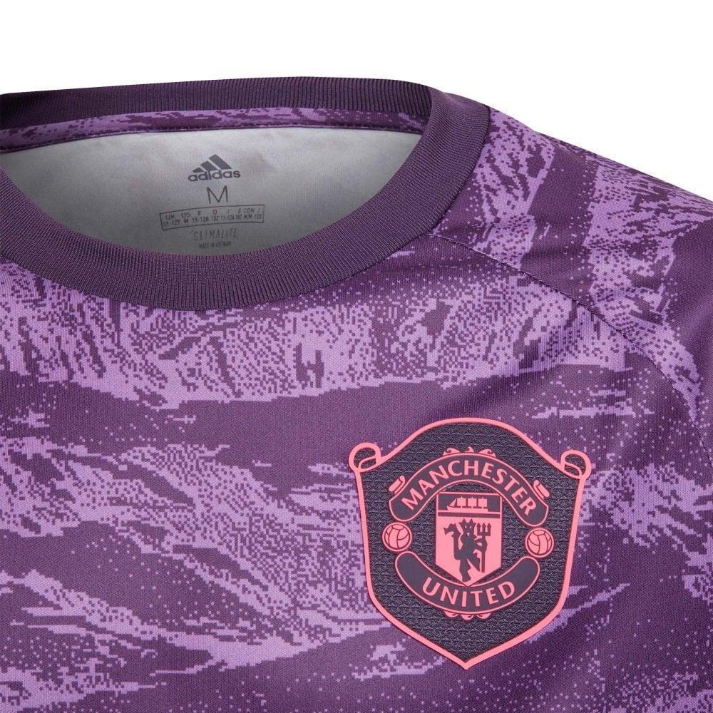 Juniors Manchester United 20192020 Goalie Home Shirt (Purple)