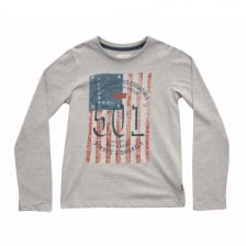 Levis Juniors Flag Print T-Shirt (Grey)